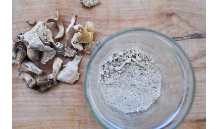 Magic mushrooms pressed tabs [dosage FAQ]